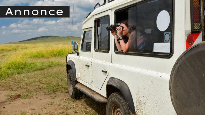 safarirejse i Afrika